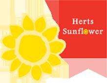 Trasnparent sunflower logo